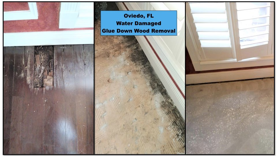 We removed water damaged, glued down wood in this Oviedo home